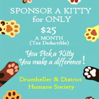 Sponsor a Kitty!