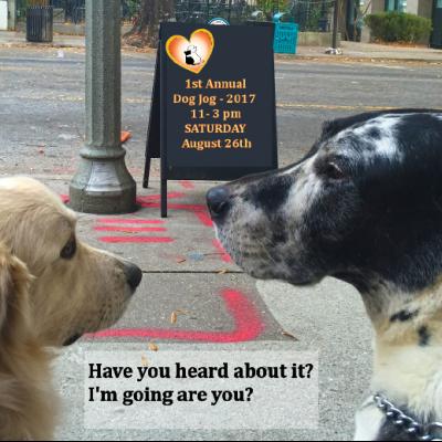 Have you Heard? 1st Annual Dog Jog 2017