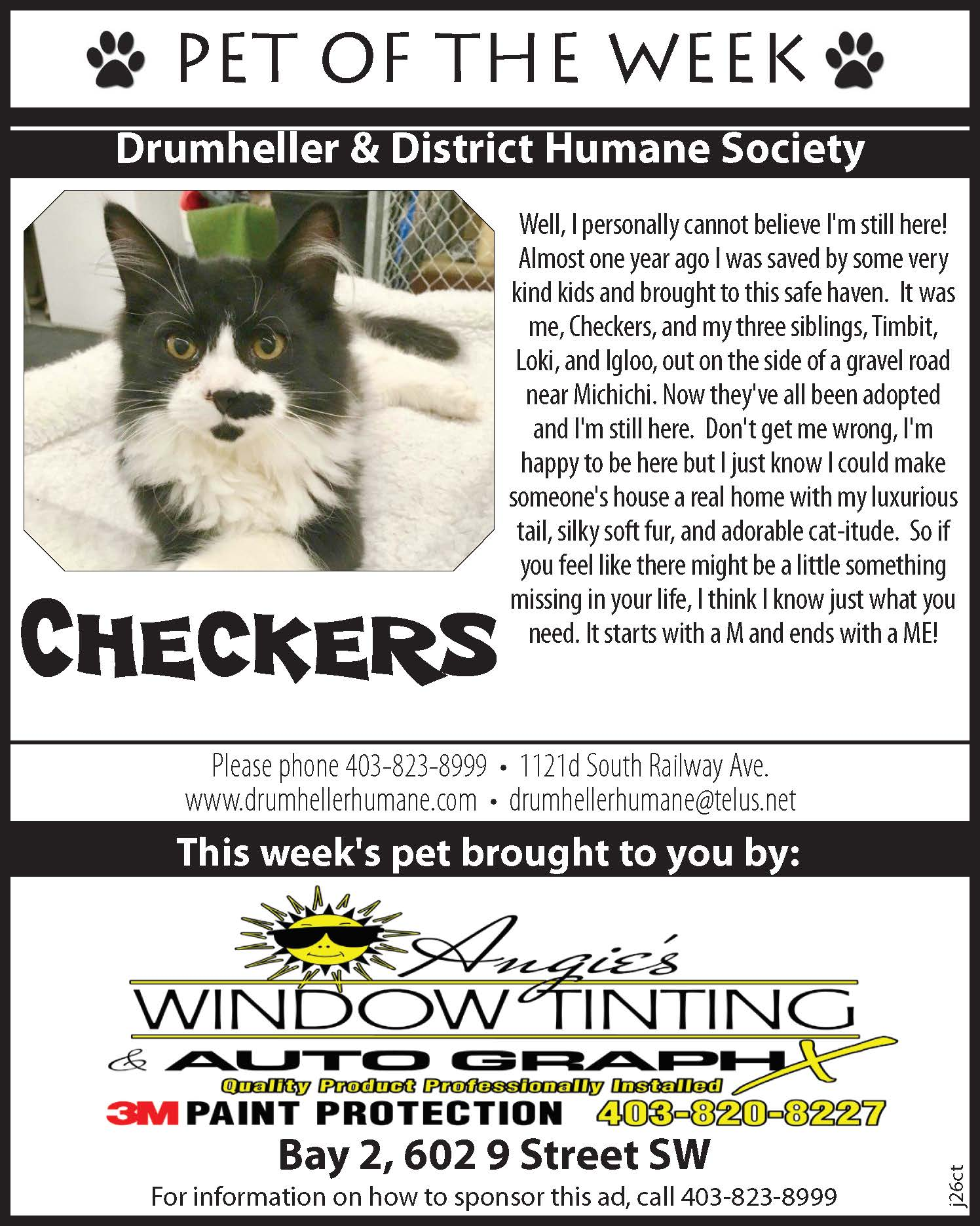 petoftheweek checkers