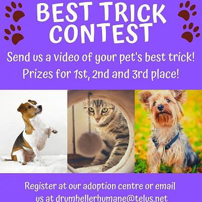 Best Trick Contest